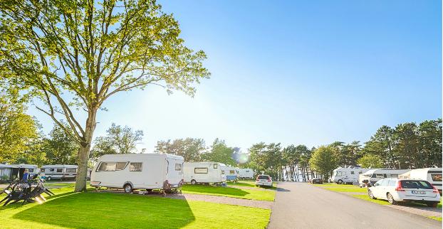 Camping dejtingsajt
